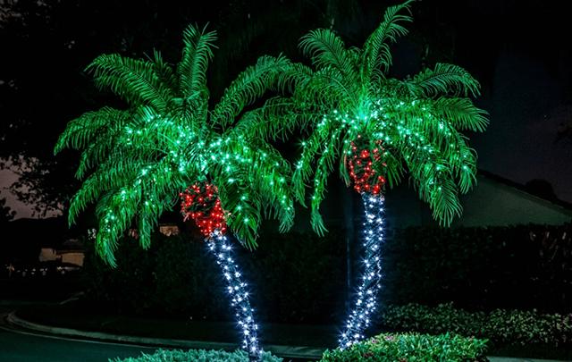 verlichte palmbomen